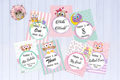 Baby Milestone Cards - Owl - Baby Shower Gift -Photography Prop - Pack of 30