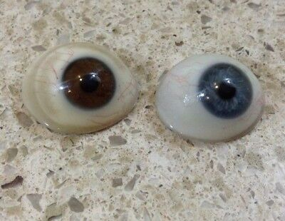 Two Vintage Glass Brown & Blue EYE BALL PROSTHETIC MEDICAL OPTICAL HUMAN