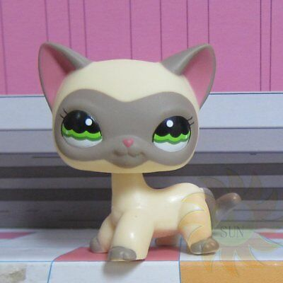 Hasbro Littlest Pet Shop Collection LPS #1116 Cream Gray Masked Short Hair Cat T