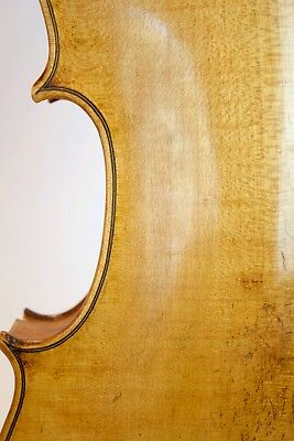 A German or French violin Labeled Amati