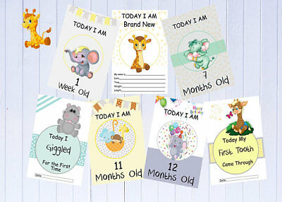 Baby Milestone Cards - Baby Shower Gift- Photography Props -Zoo Theme - 28 Cards