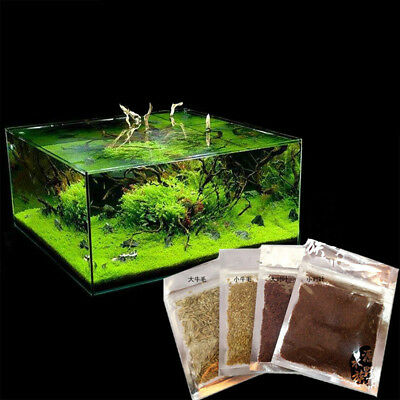 Fish Tank Foreground Plant Aquarium Plant Seeds Aquatic Water Grass Decor strong