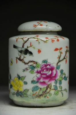 BEAUTIFUL CHINESE PORCELAIN HANDWORK PAINTING BIRD & FLOWER STORAGE TANK Zw