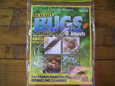 National Geographic Real-life Bugs & Insects magazine Issue 66