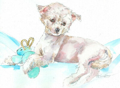 CHINESE CRESTED PUP Original Watercolor on Ink Print Matted 11x14 Ready to Frame