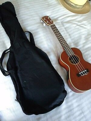 Ukelele Stagg electric with bag
