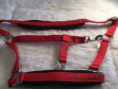 Closing Down Sale - Nylon Halter Red and Black Size Pony