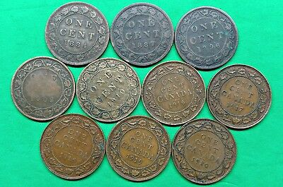 Lot of 10 Different Old Canada Large Cent Coins 1884-1920 !!