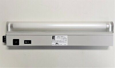 "RITTAL 9968111 Panel Fluorescent Light Fixture, 18"" with Lens & Outlet, 120V"