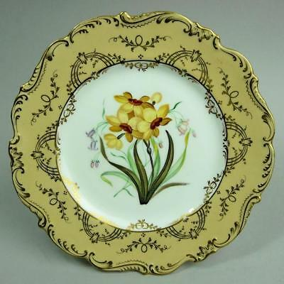 Antique Coalport Hand Painted Porcelain Cabinet Plate C.1845