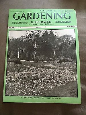 """Feb 1952 Gardening Illustrated """"a Remarkable Greenhouse Collection"""" Magazine"""