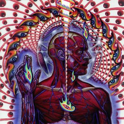 Tool - Lateralus 2001 Album Cover Canvas Wall Art Poster Print Music Cd