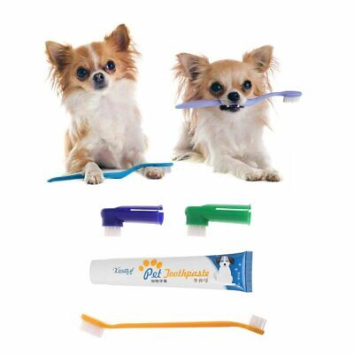 4PCS Pet Dog Cat Puppy Chicken Flavour Toothpaste+Toothbrush+Back Up Brush
