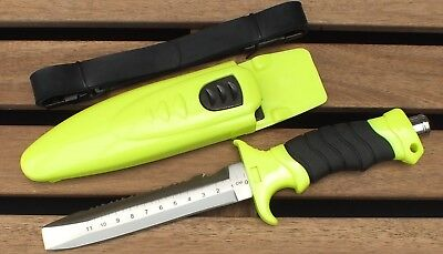 Abalone Divers Knife Tool Stainless Steel with a Ruler WILCOMP WIL-DK-12S