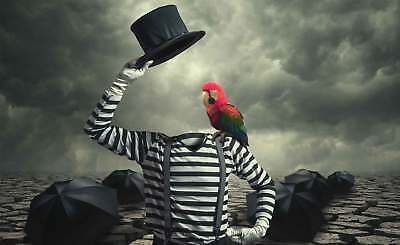 WALL MURAL PHOTO WALLPAPER XXL Headless Mime Abstract Parrot Hat (1X-1028676WS)