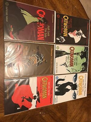 DC Catwoman When In Rome A Catwoman Murder Mystery Complete Run 1-6 Jeph Loeb NM