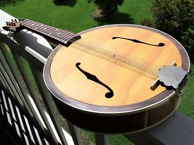 Vintage steel string mandolin. A beautiful instrument.