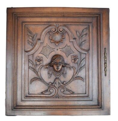French Architectural Renaissance Style Hand Carved Walnut Wood Door Panel 19th
