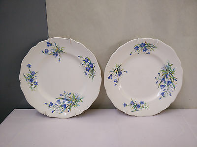 Beautiful Pair of Royal Doulton Bluebell Plates - AD