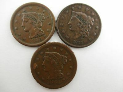 3 U.S. Large Cents Coins 1837, 1854 & 1855 (Upright 5)