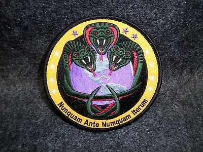 Cobra Snakes World Earth NRO Patch Venomous Reptiles Arm Patch Nat Recon Office