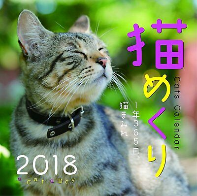 Cat turns ,2018 Daily Calendar from Japan F/S