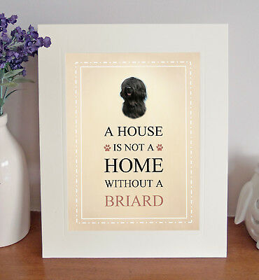 Briard (Black) 8 x 10 Free Standing A HOUSE IS NOT A HOME Picture 10x8 Dog Print