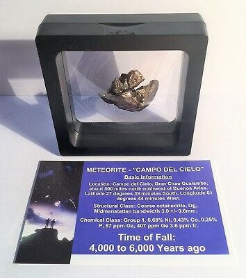 """""""RARE"""" 22.1 Gram Meteorite """"Campo Del Cielo"""" Museum Quality with stand and Cert"""