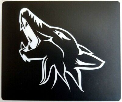 Silver 2015-2019 Ford Mustang Sun Visor Warning Label Coyote Blackout Decals