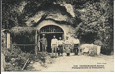 (S-28103) FRANCE - 72 - COURDEMANCHE CPA      CARY ed.