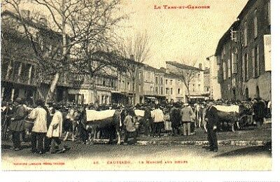 (S-96114) FRANCE - 82 - CAUSSADE CPA      LABOUCHE Freres ed.