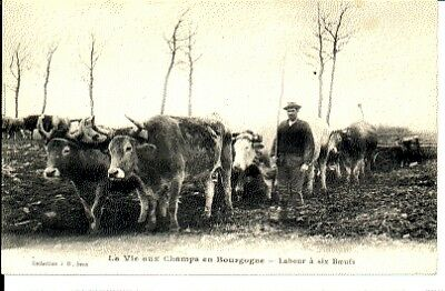 (S-30451) FRANCE - 89 - NON SITUEE CPA      J.D. ed.