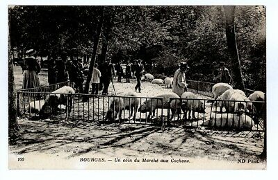 (S-19549) FRANCE - 18 - BOURGES CPA      N.D.  ed.