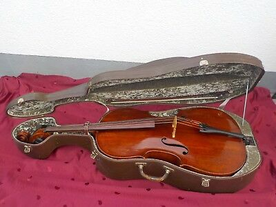 Meistercello /Cello von Eugenio Degani 1894 mit Unterlagen v.Cellist Willy Hirth