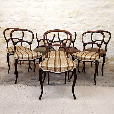 Early Victorian Rosewood Set of 8 Balloon Back Dining Chairs - C1860 (Antique)