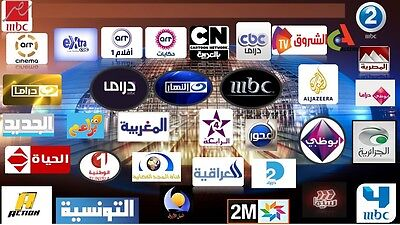 1 Year Iptv Account With 450 Arabic Channels for smart tv