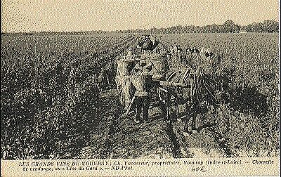(S-24407) FRANCE - 37 - VOUVRAY CPA      N.D.  ed.