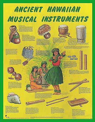 """ANCIENT HAWAIIAN MUSICAL INSTRUMENTS POSTER - 22""""x 28"""" by Artist Roy Hewetson"""