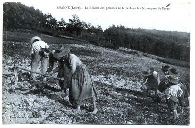 (S-103942) France - 42 - Roanne Cpa