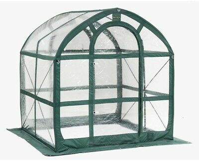 Greenhouse 6 Ft. X 6 Ft. PVC Pop-Up, Clear Spring Fall Plant Room