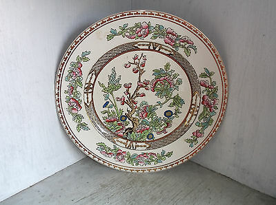 """Alfred Meakin England THE INDIAN TREE Dinner Plate 10"""""""