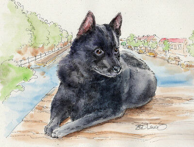 SCHIPPERKE Original Watercolor on Ink Print Matted 11x14 Ready to Frame