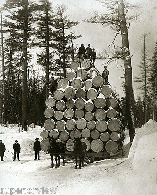 Michigan Greatest Logging Photo Worlds Fair Load Of Logs 1893 Chicago AMAZING