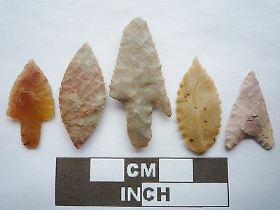 Neolithic Arrowheads x5, High Quality Selection of Styles - 4000BC - (Q121)