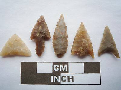 Neolithic Arrowheads x5, High Quality Selection of Styles - 4000BC - (Q119)
