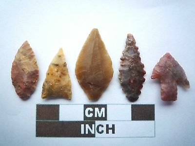 Neolithic Arrowheads x5, High Quality Selection of Styles - 4000BC - (X021)