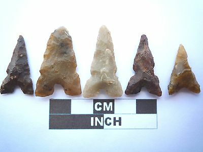 Neolithic Arrowheads x 5, Eiffel / Moroccan Points, Genuine - 4000BC  (T047)