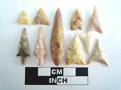 Neolithic Arrowheads x 10, High Quality Selection of Styles - 4000BC - (0390)