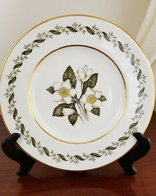 "royal worcester bernina bone china dinner plate 10 1/2""-2 Available"