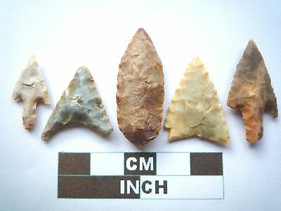 Neolithic Arrowheads x 5, Higher Quality, Genuine Artifacts from 4000BC  (V037)